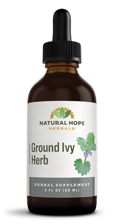 GROUND IVY HERB - Respiratory & Urinary Tract Support Tonic
