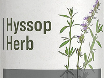 HYSSOP HERB - Traditional Intestinal Respiratory & Immune System Support