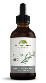 LOBELIA HERB - Potent Respiratory & Nervous System Support