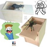 Surprise Box with Spider - Amish Handmade Fun Prank Unfinished for Custom Touch