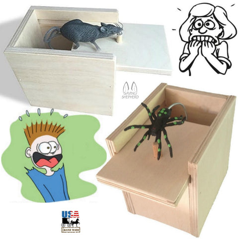 Mouse & Spider Surprise Box ~ 2 Amish Handmade Fun Prank Gag Gifts