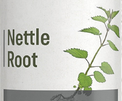 STINGING NETTLE ROOT - Healthy Kidney & Urinary Tract Support