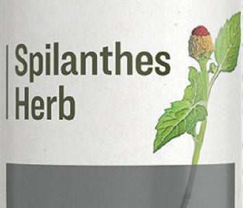 SPILANTHES HERB -