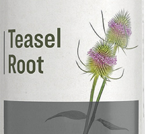 TEASEL ROOT - Healthy Circulation Bone Joint & Lyme Disease Support
