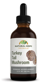 TURKEY TAIL MUSHROOM - Digestive, Immune & Respiratory Support