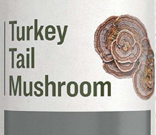 TURKEY TAIL MUSHROOM - Digestive & Immune System Support Tincture