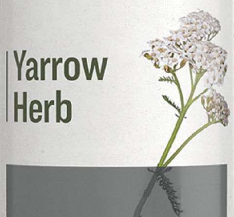 YARROW HERB - Healthy Immune System & Digestive Tract Support