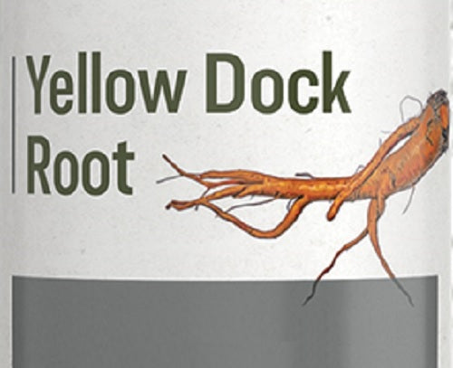 YELLOW DOCK ROOT - Blood, Liver & Digestive Support Detox Tonic