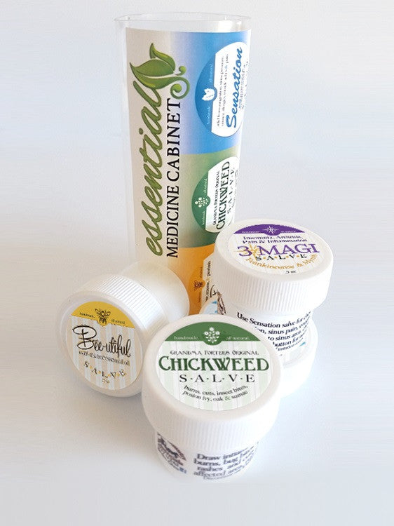 4 SALVE COMBO PACK - Chickweed Sensation BeeUtiful & 3 Magi Salves ALL NATURAL
