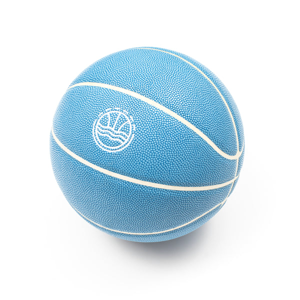 Veniceball Blue Leather Basketball