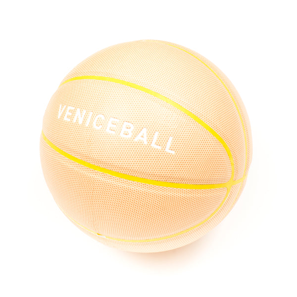 Veniceball Desert Tour 2019 basketball (Sand Stone Rock)