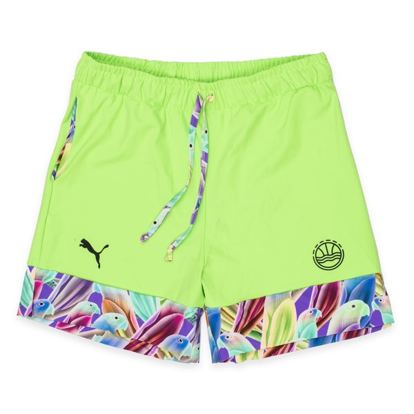 Official 2019 Veniceball Team Dom Pen Green Light Gameday Shorts
