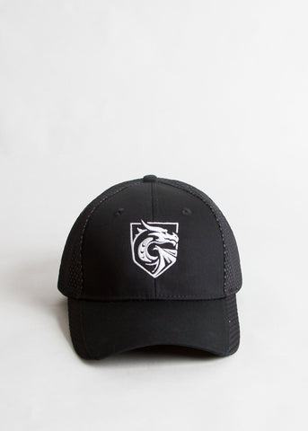 Mesh Dragon Hat
