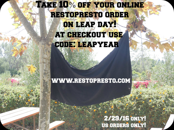 Leap Year Savings - ONE DAY ONLY! 10% off!