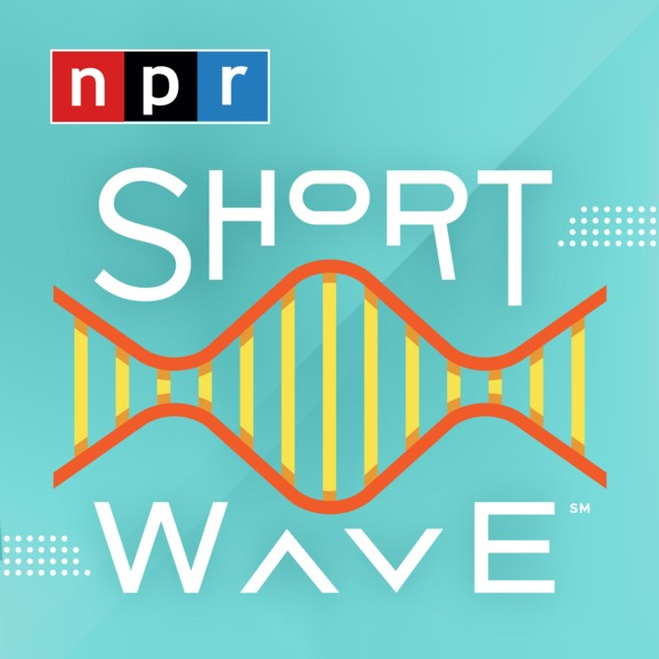 Short Wave Podcast Tile Sticker