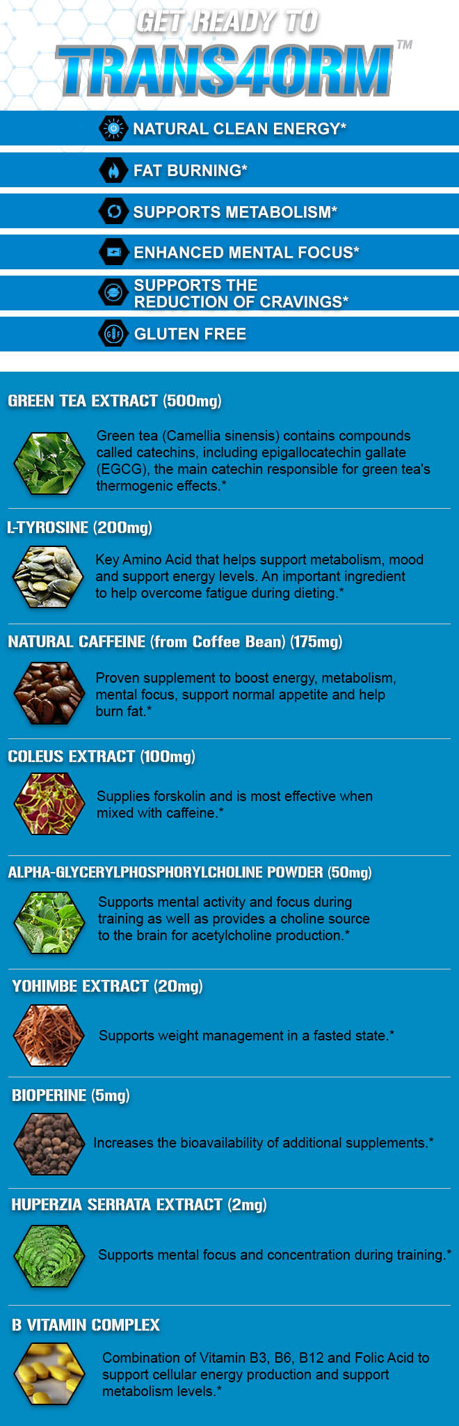pre workout supplement online