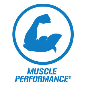 muscle performance | gym supplements u.s