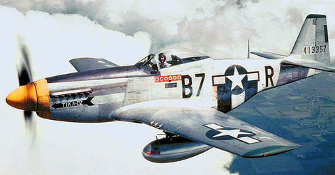 A Flight of A Lifetime - Dad's dream flight in a P-51 Mustang! -  Ottawa Golf Course Specials