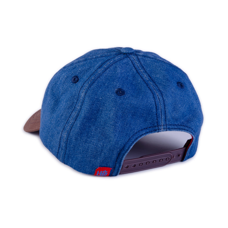 NASA Meatball Logo Hat
