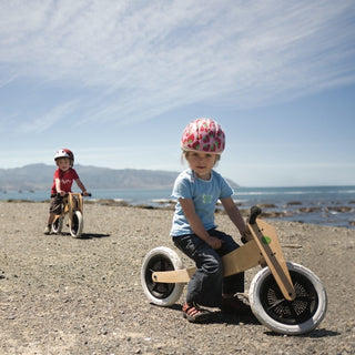 Wishbone Bike 3-in-1 bei KidsWoodLove