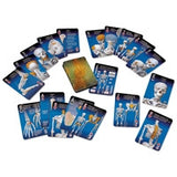 Human Skeleton Playing Cards - The Science Shop