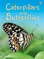 Caterpillars and Butterflies - The Science Shop