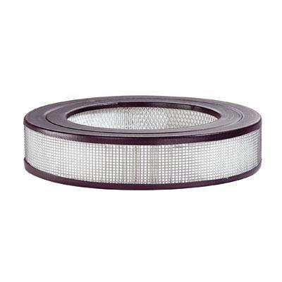 True Hepa Replacement Filter-Home Environment-Kaz Inc-ILife Store