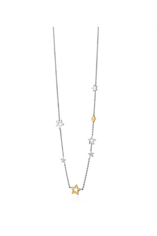 Silver & Gold Stargazers Necklace