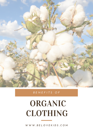 organic clothing benefits
