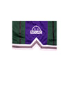 Sunrise Hoop Shorts (Green/Purple)
