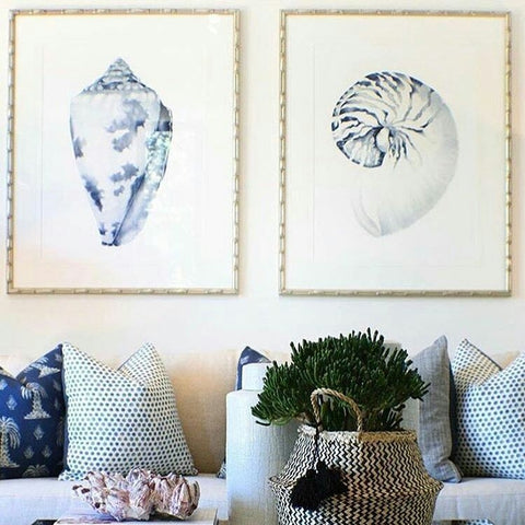 Careel Bay Shell Collection from Designer Boys Art captured in situ by Leaving with Style