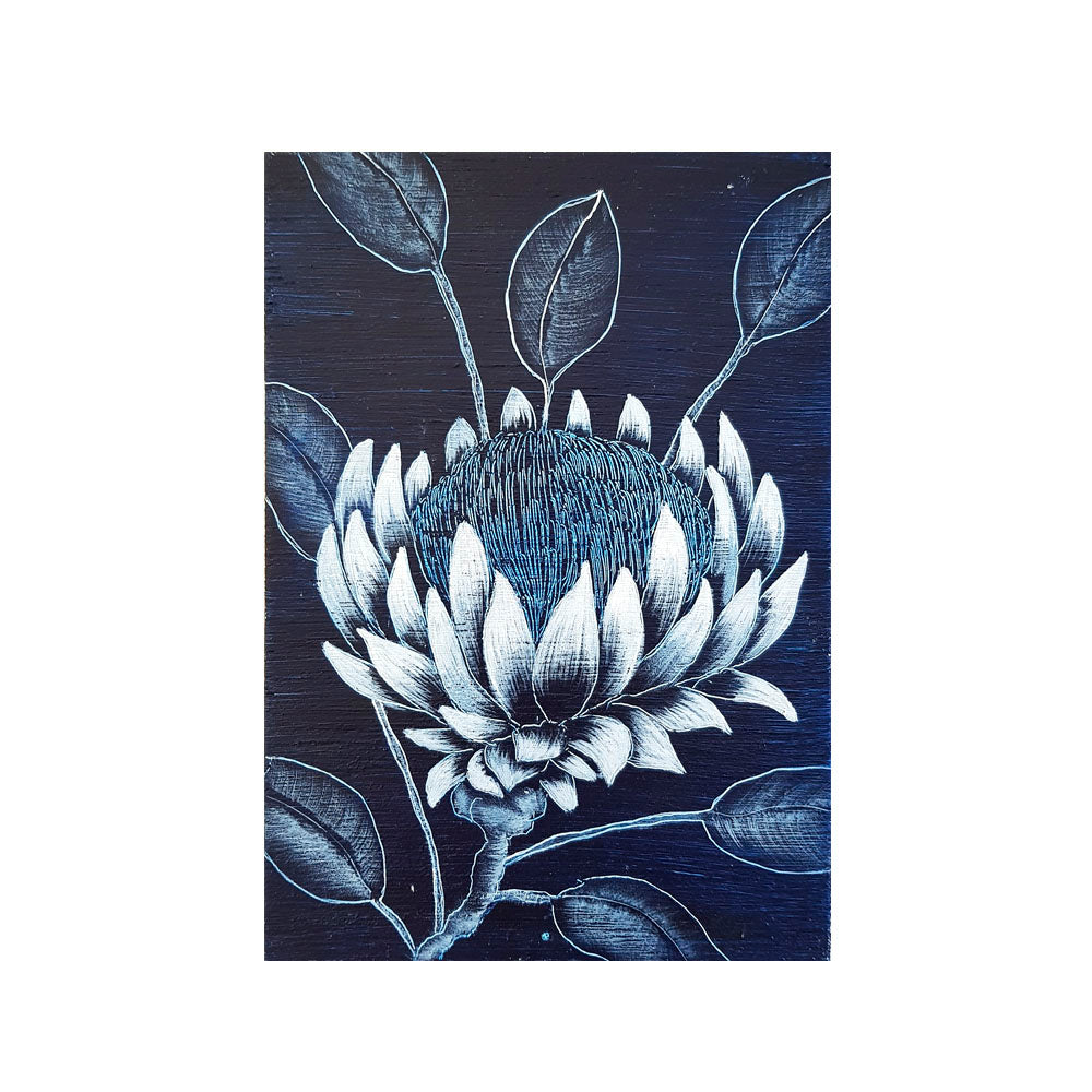 An original painting of an Australian Native Protea wildfower in blue and white on a wooden block  Original one of a kind art created by Rebecca Coulter