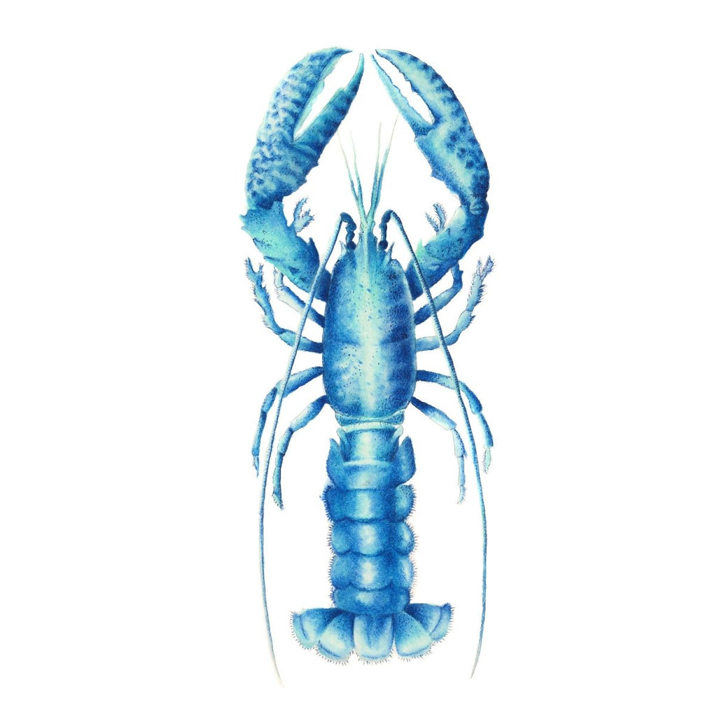 Blue Lobster Art Print of an Original Watercolour Painting Coastal Art Ocean Decor - Artista Style