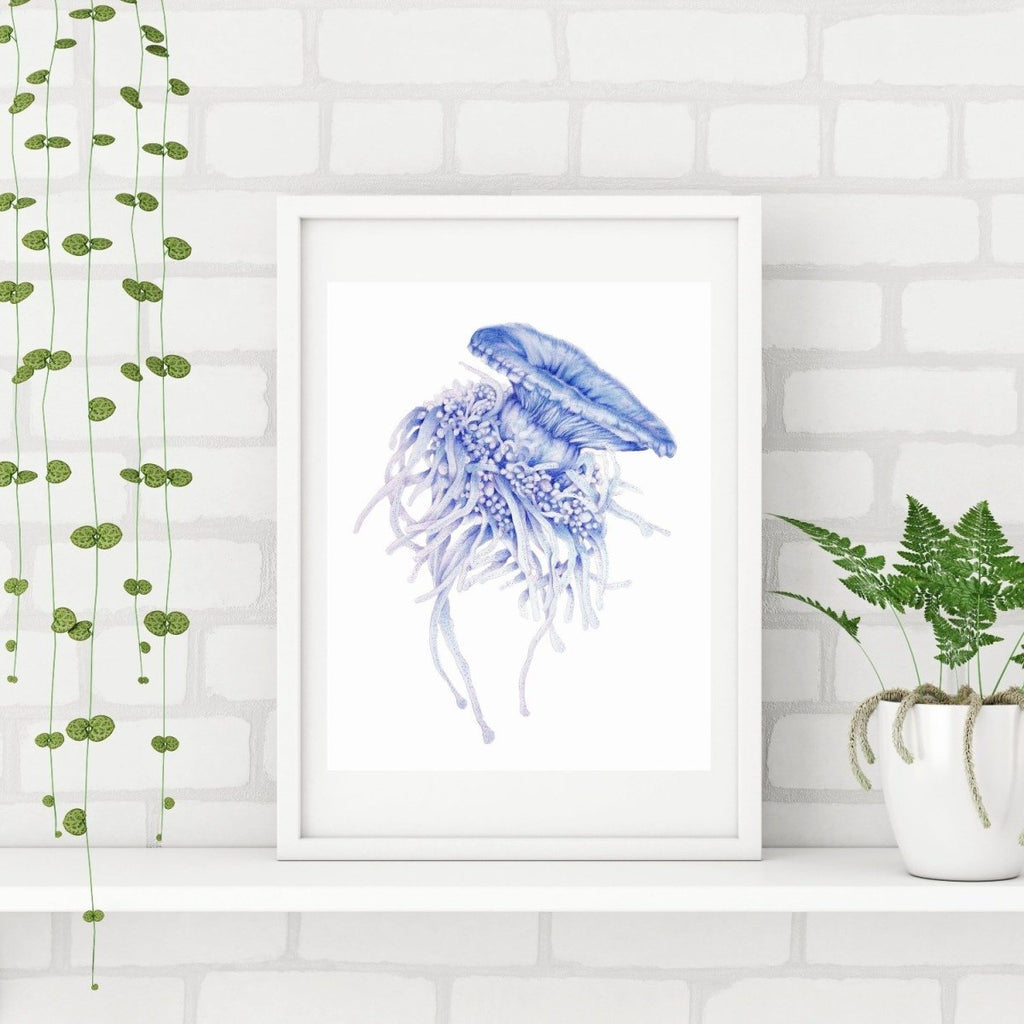 SET OF 3 ART PRINTS JELLYFISH AND LEAFY SEA DRAGON - Artista Style
