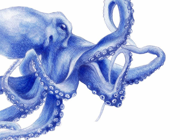Ultramarine Octopus Watercolour Painting Archival Art Print in Shibori Blue Hamptons Style Decor - Artista Style