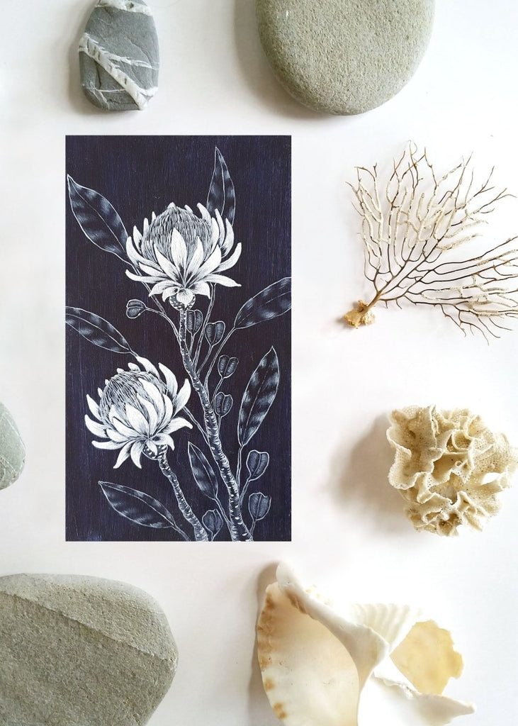 Waratah flowers Woodblock Painting Blue White 14 x 25cm No 21 - Artista Style