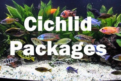 Cichlid Packages