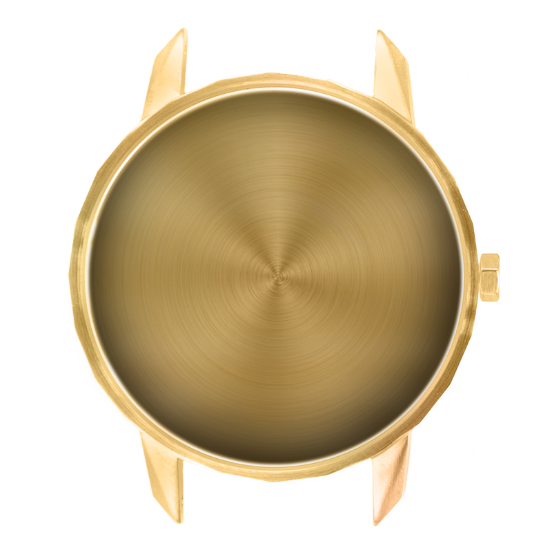 Component - 42mm Gold Case