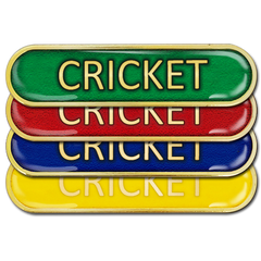 Cricket Bar Badge