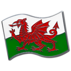 Welsh Flag Badge by School Badges UK