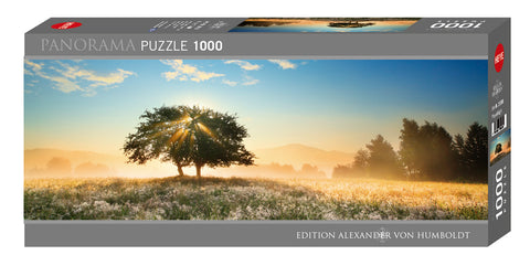 Jigsaw Puzzle: HEYE - AvH Play of Light (1000 Pieces)