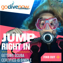 #GoDiveNow Learn to Dive with Central PA Scuba