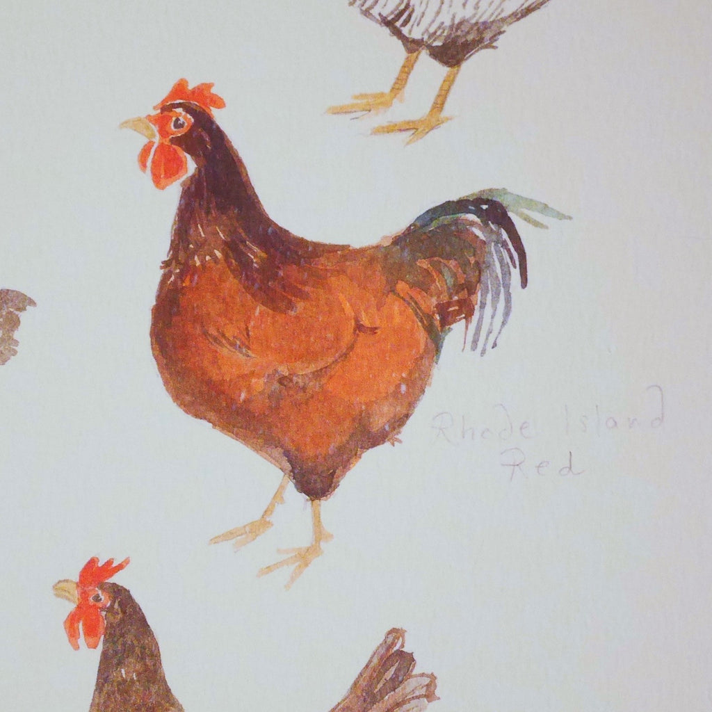 Chicken Breeds Print - Blue Bowl