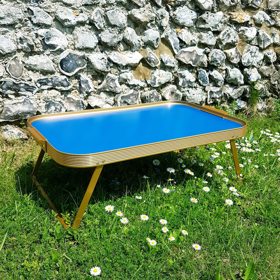Lap Tray - Blue Bowl