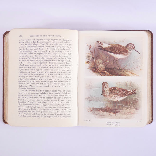 Vintage Bird Books - Blue Bowl