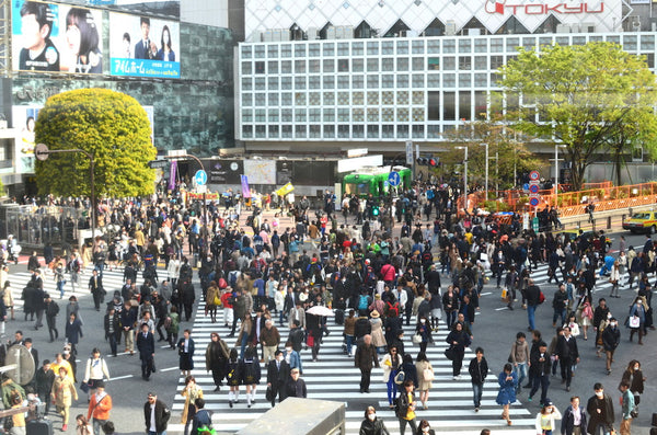 Shibuya Crossing - Postcards Home