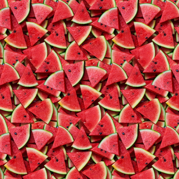 Slice of Life Watermelon A La Carte  Cotton Fabric Windham By the Yard