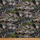 Born Free Otters Cotton Fabric Wildlife  BY the Yard