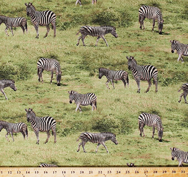 Born Free Zebras  Cotton Fabric African  Wildlife  BY the Yard
