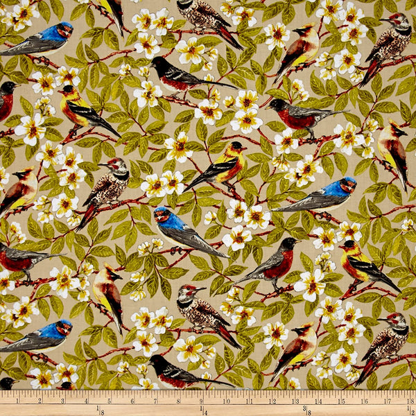 Paloma Songbird  Birds in Tree Exclusively Quilters Cotton Fabric By the Yard